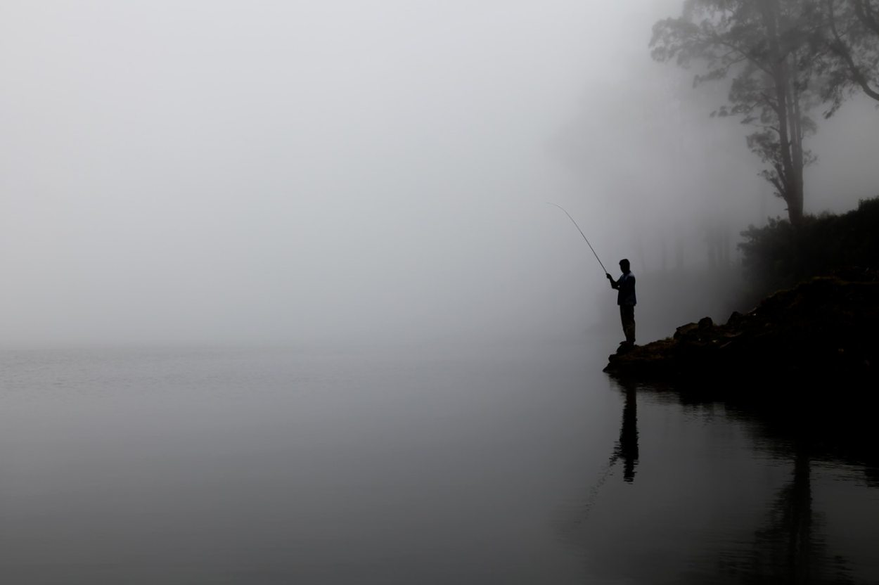 vissen op karper